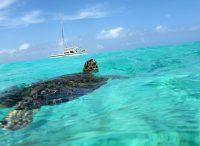 Micro site Curaçao tafeltennistoernooi